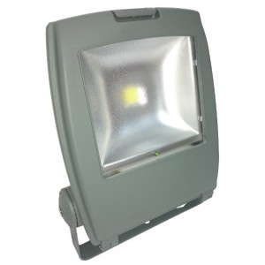 50W Maintained IP65 LED Flood Light