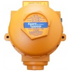 Crowcon Xgard (Type 3) Flameproof Flammable Gas Detector